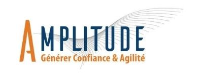 Amplitude Consulting Paris