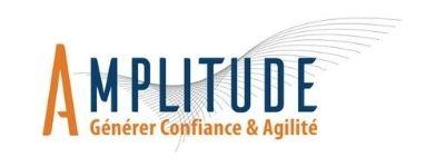 Amplitude Consulting Paris